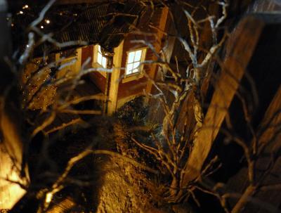 木立の奥へ