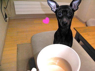 紅茶好き♪