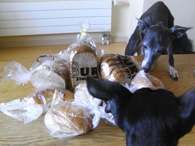 パン食べたい~