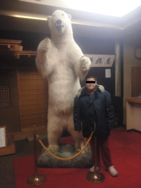 白熊とボク