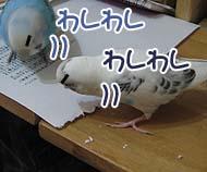 やけ食い?!