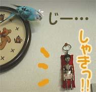 migawari-03.jpg