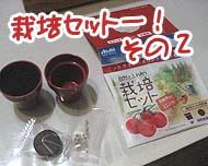 トマトの栽培セット♪