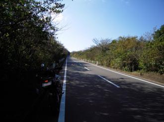 伊豆大島5