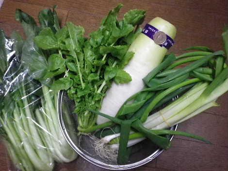 大根、ネギ、小松菜