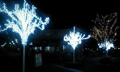 20081201_0151~浜名湖インター1