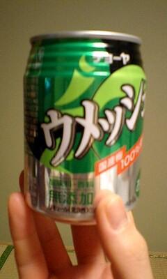 081230_0012~ウメッシュ