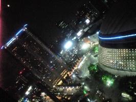 観覧車から見た東京ドーム