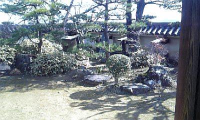 20110209garden2.jpg