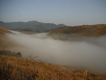 秋吉台の「霧の河」-3