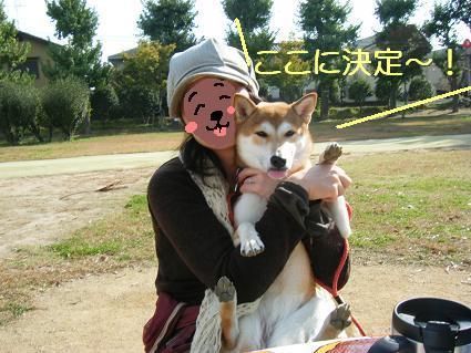11 02行楽2