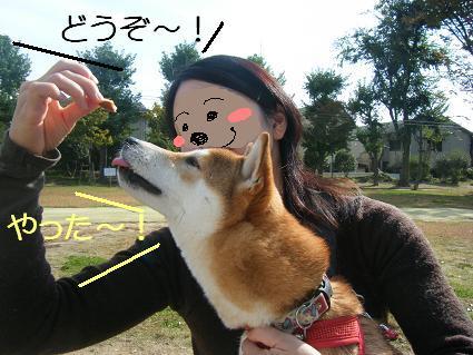 11 02行楽7
