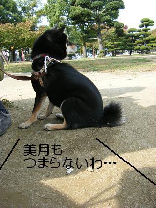 11 02行楽8