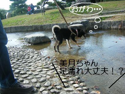 11 02行楽17