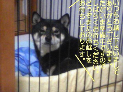 しばらく1219(12 09) 08