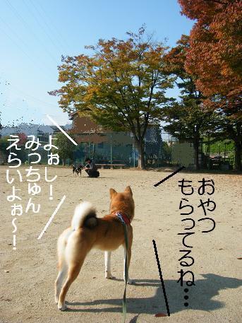 秋の掌編②1