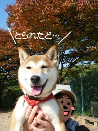 秋の掌編③1