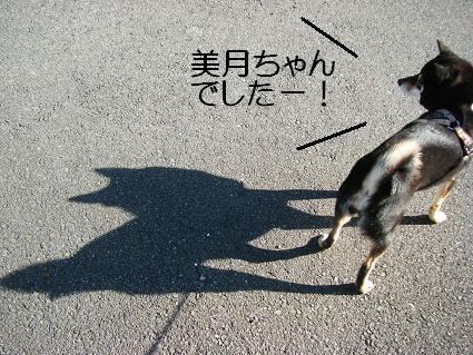 コピー ~ 影っこだ~ぁれだ?1