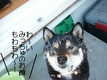 しばらく090125(01 14)