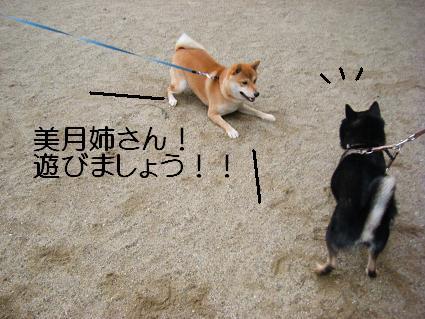 みんなで散歩!(01 01)3