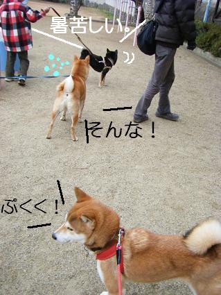 みんなで散歩!(01 01)4