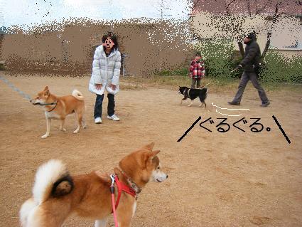 みんなで散歩!(01 01)11