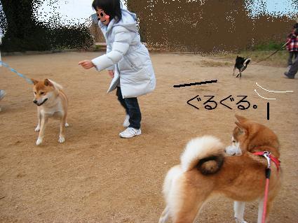 みんなで散歩!(01 01)12