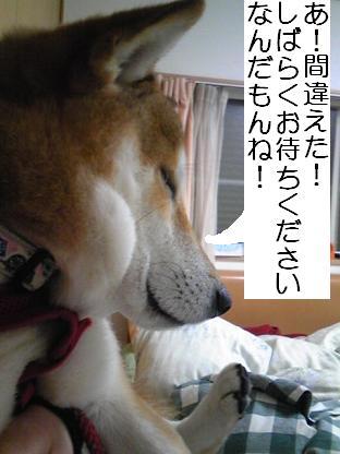 しばらく(1214)1