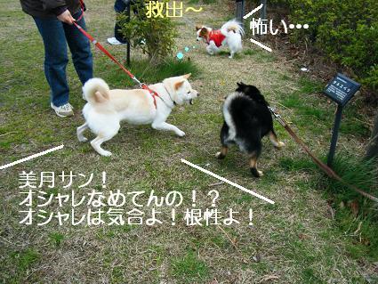 遠足女優対決再び(03 27)3