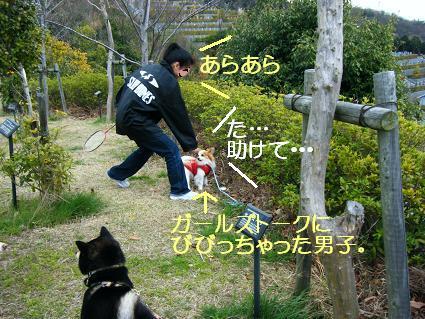 遠足女優対決再び(03 27)2