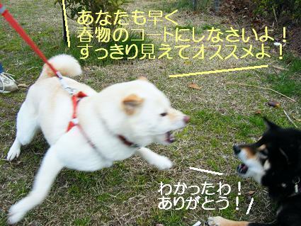 遠足女優対決再び(03 27)4