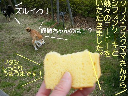 遠足③(03 27)6