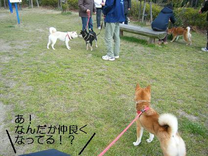 遠足③(03 27)10