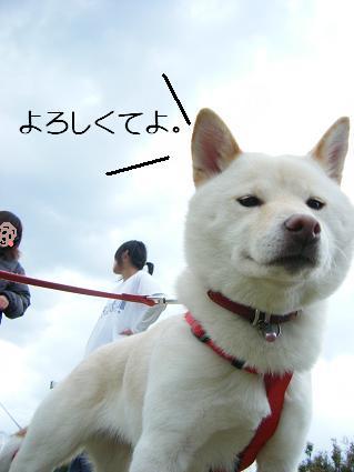遠足③(03 27)11