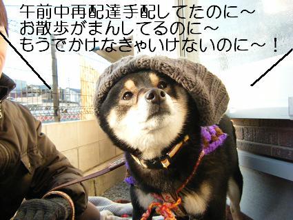しばらく0410(02 08)