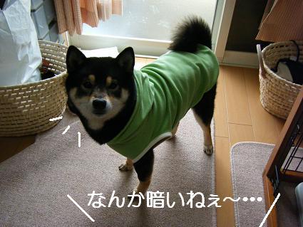 新しいお洋服!(04 03)4