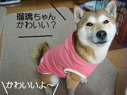 新しいお洋服!(04 03)10