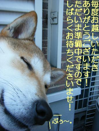 しばらく(04 11)