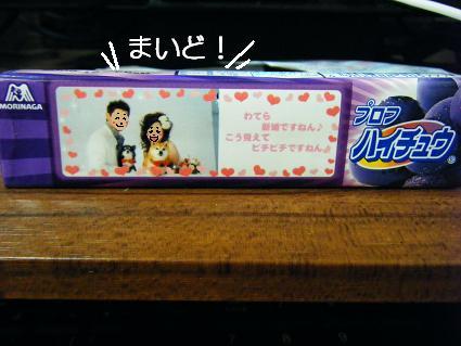 お花見二回目①(04 11)0