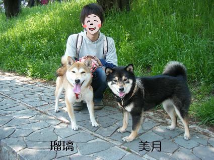 こいのぼり②(04 29)6