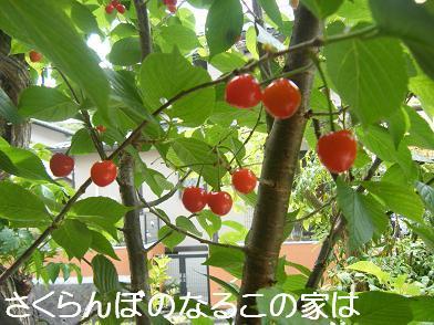 実家へ(05 03)1