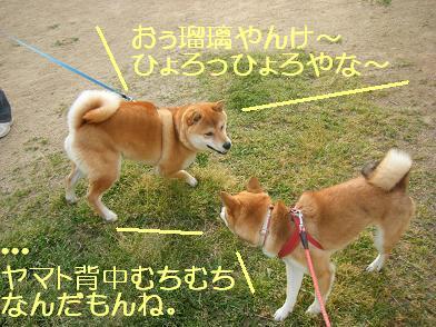 実家へ(05 03)7