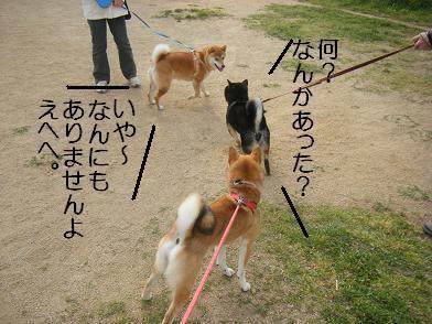 実家へ(05 03)9