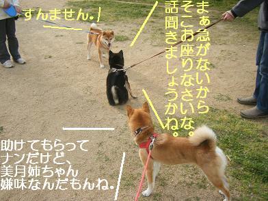 実家へ(05 03)10