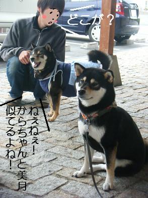 うにのしおから(05 05)4