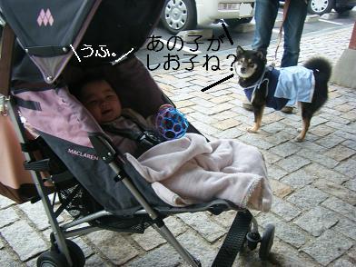 うにのしおから(05 05)3