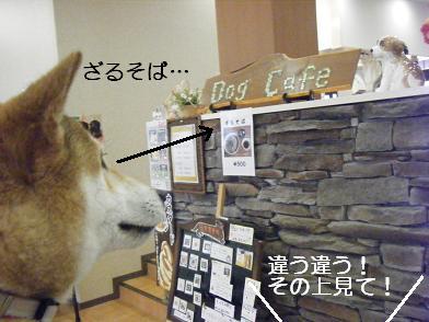 うにのしおから(05 05)9