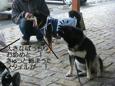 うにのしおから(05 05)5