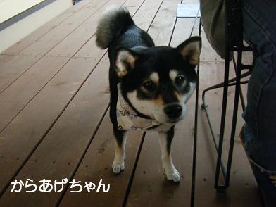 うにのしおから(05 05)11