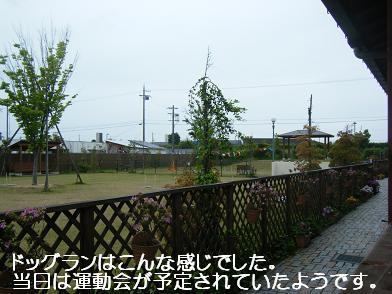 うにのしおから(05 05)15
